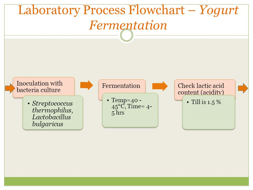 yogurt fermentation The many benefits of fermented milk products include enhanced yogurt is a fermented food that holds the same level of protein and fat as the milk from.