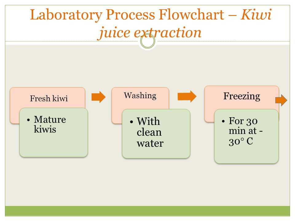 Laboratory Process Flowchart – Kiwi juice extraction