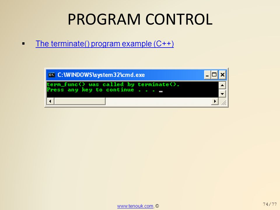 PROGRAM CONTROL The terminate() program example (C++)