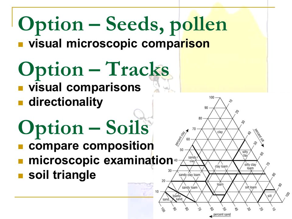 Option – Seeds, pollen Option – Tracks Option – Soils