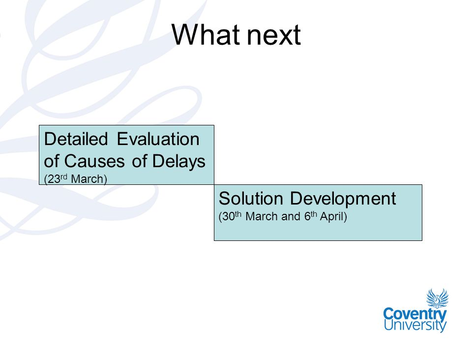 What next Detailed Evaluation of Causes of Delays Solution Development