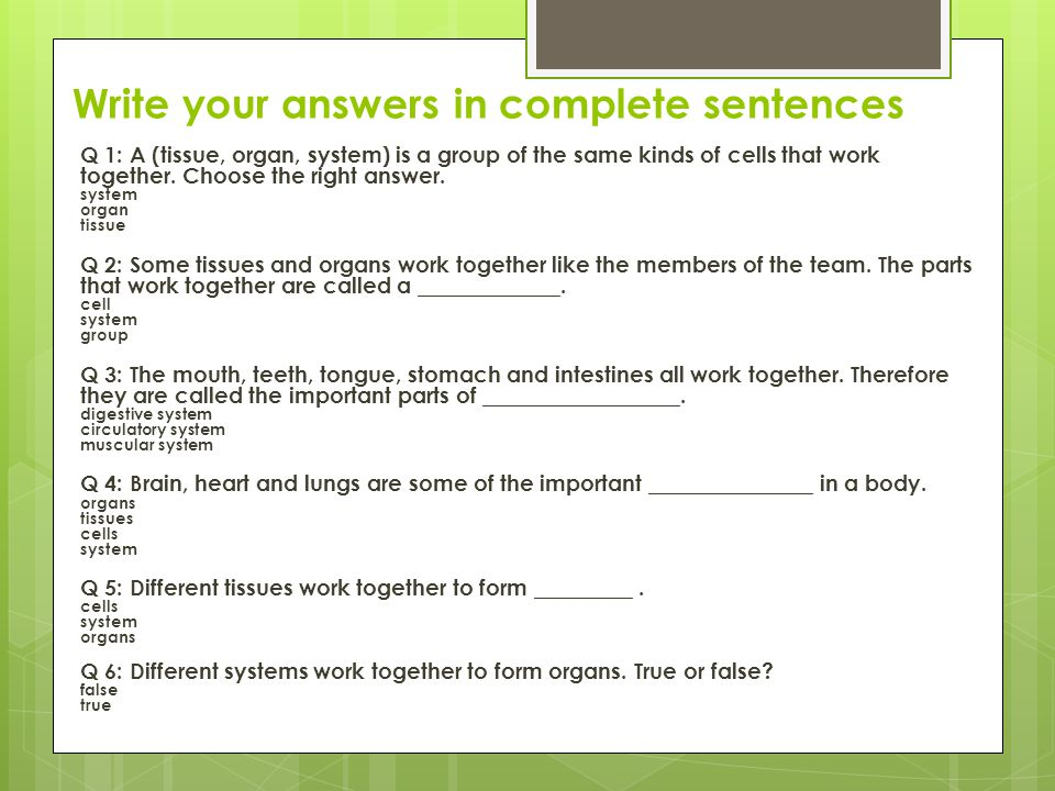 Write your answers in complete sentences