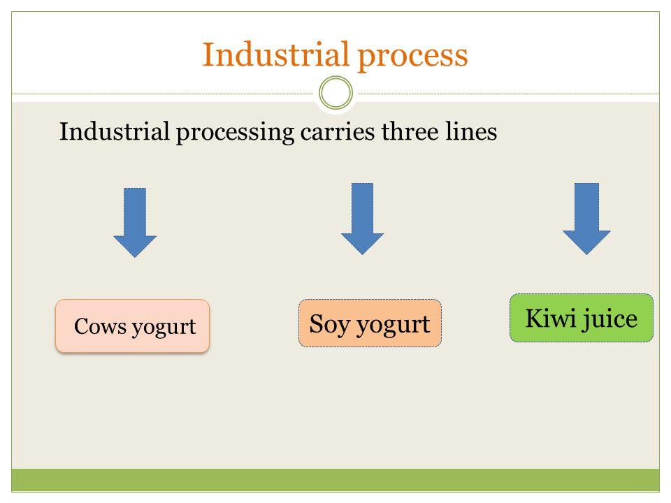 Industrial process Kiwi juice Soy yogurt