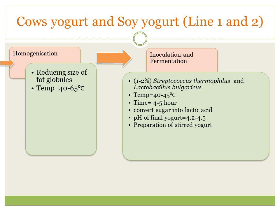 Cows yogurt and Soy yogurt (Line 1 and 2)