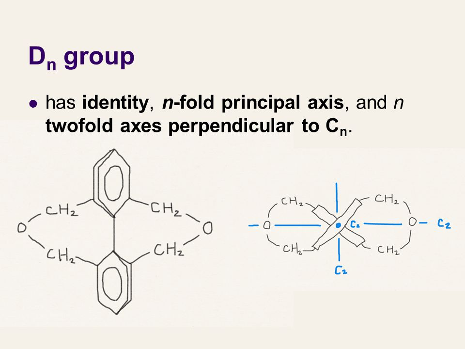Dn group has identity, n-fold principal axis, and n twofold axes perpendicular to Cn.