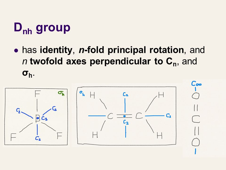 Dnh group has identity, n-fold principal rotation, and n twofold axes perpendicular to Cn, and σh.