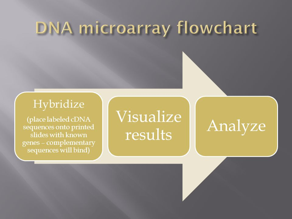 DNA microarray flowchart