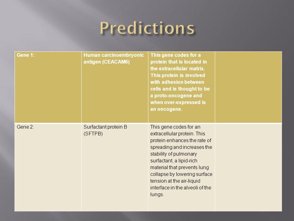 Predictions Gene 1: Human carcinoembryonic antigen (CEACAM6)