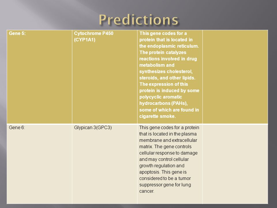 Predictions Gene 5: Cytochrome P450 (CYP1A1)