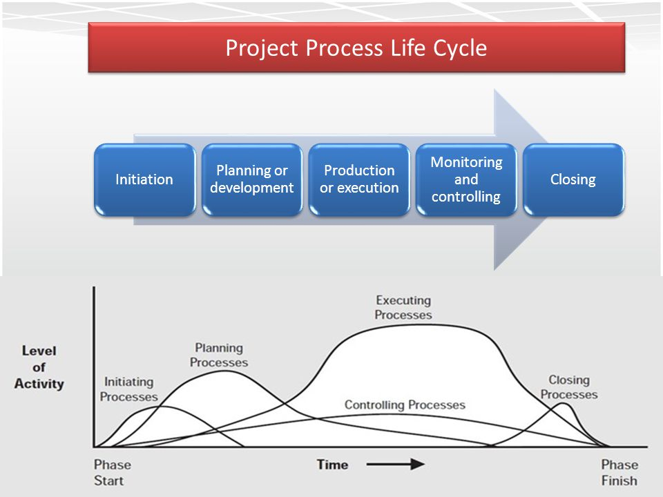 Project Process Life Cycle