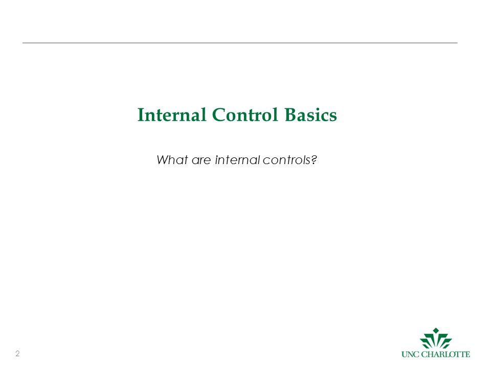 Internal Control Basics