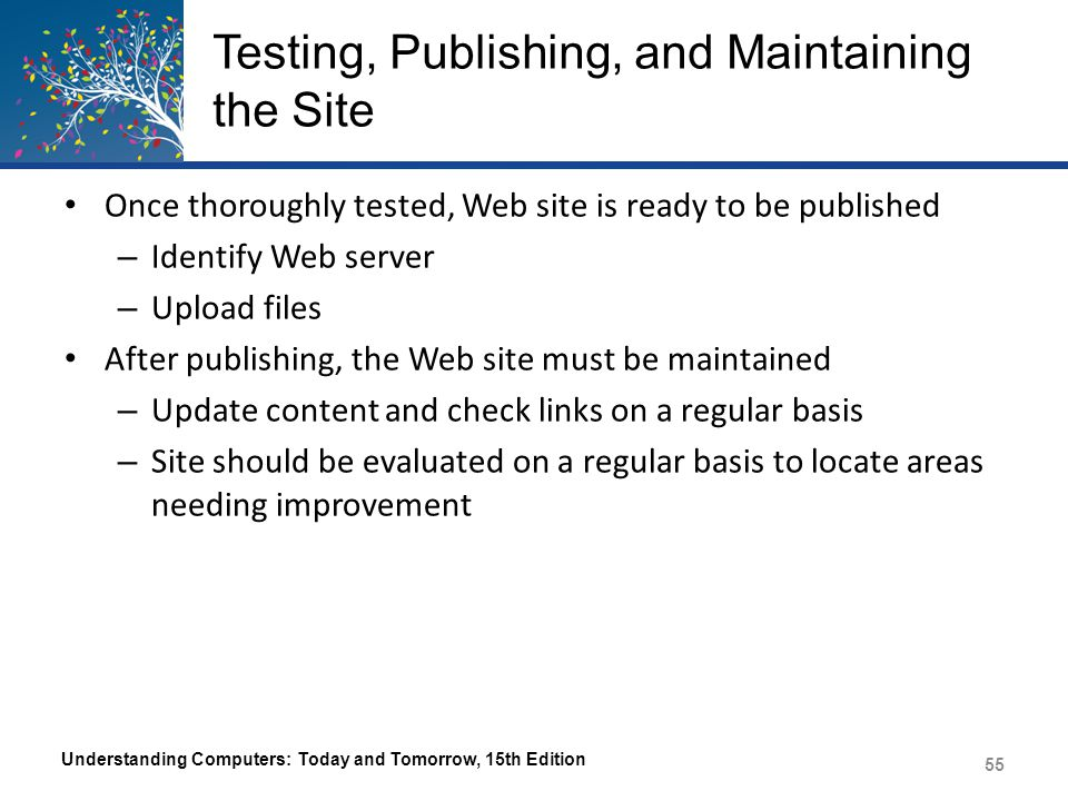 Testing, Publishing, and Maintaining the Site