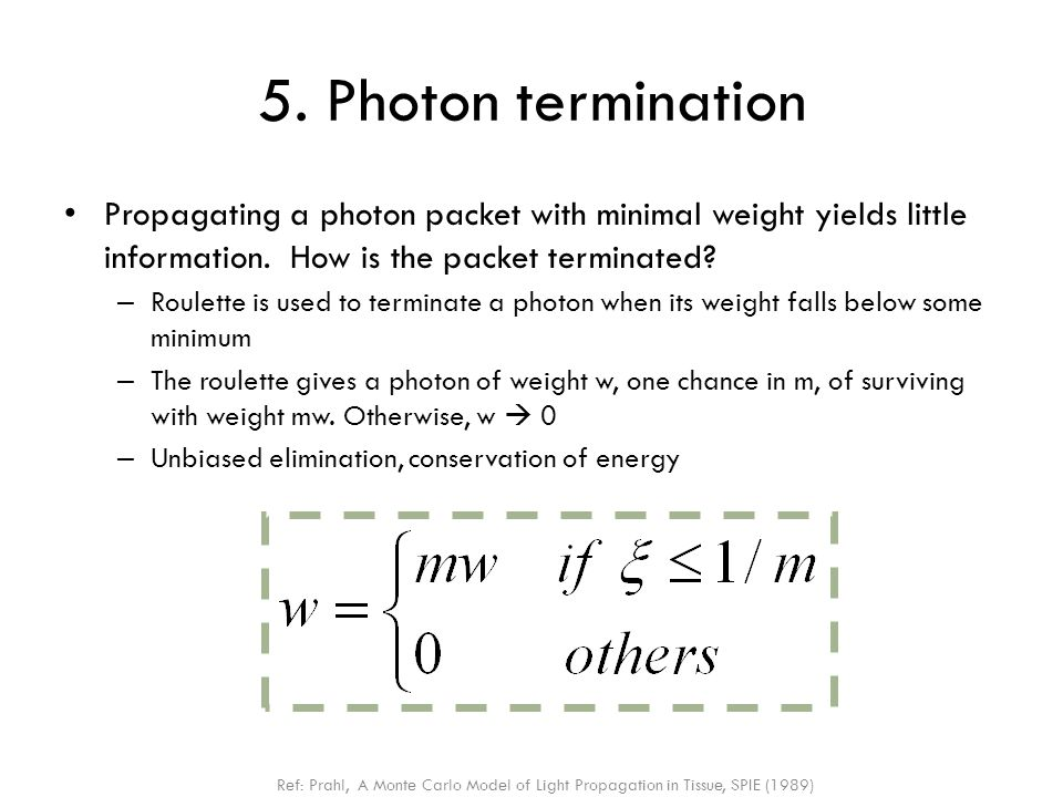 5. Photon termination Propagating a photon packet with minimal weight yields little information. How is the packet terminated