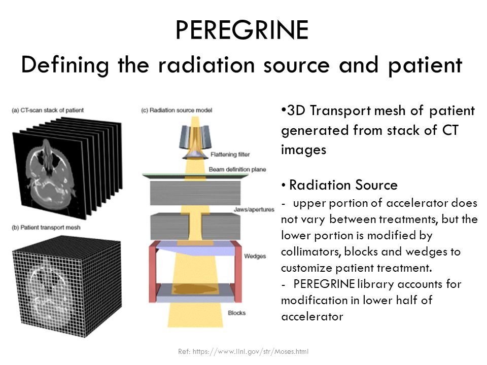 PEREGRINE Defining the radiation source and patient