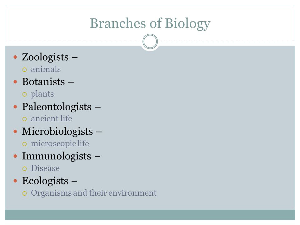 Branches of Biology Zoologists – Botanists – Paleontologists –