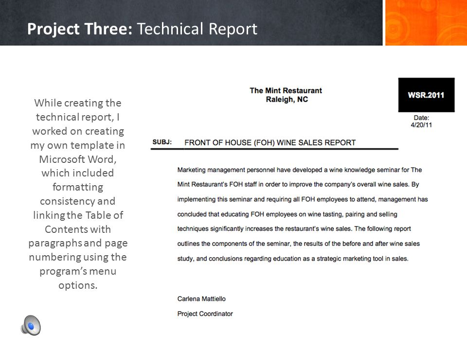 Project Three: Technical Report
