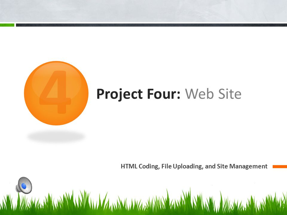 4 Project Four: Web Site HTML Coding, File Uploading, and Site Management