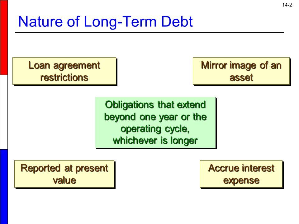 Nature of Long-Term Debt