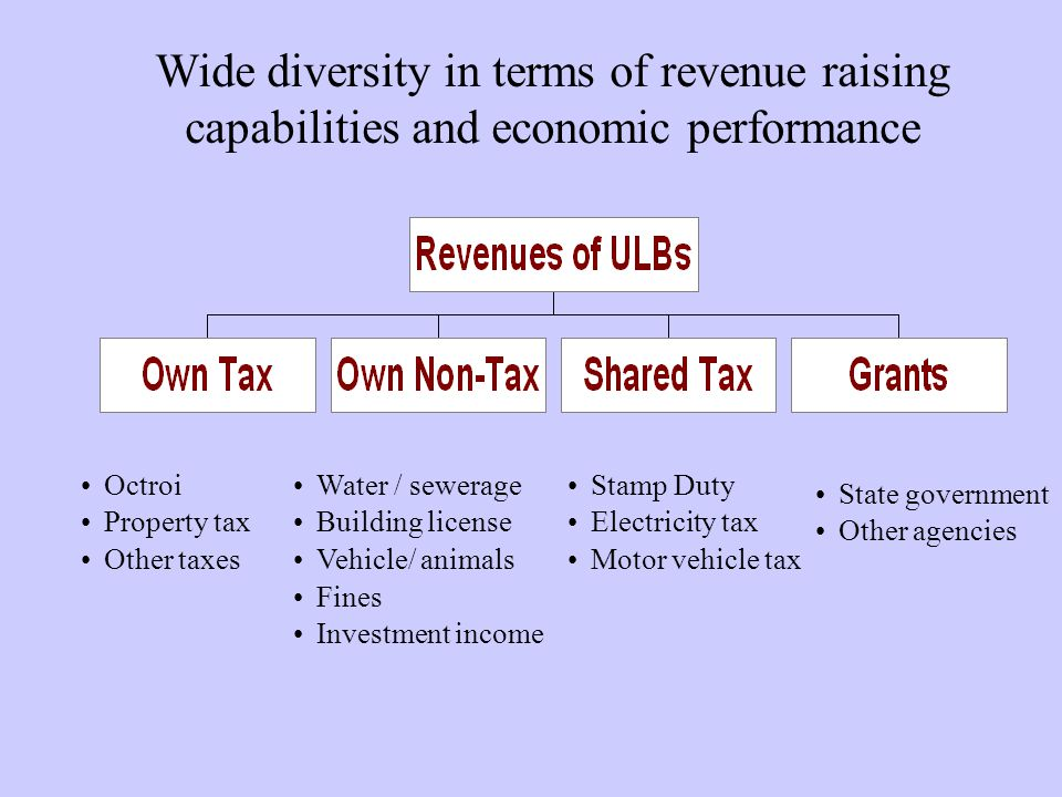 Wide diversity in terms of revenue raising capabilities and economic performance