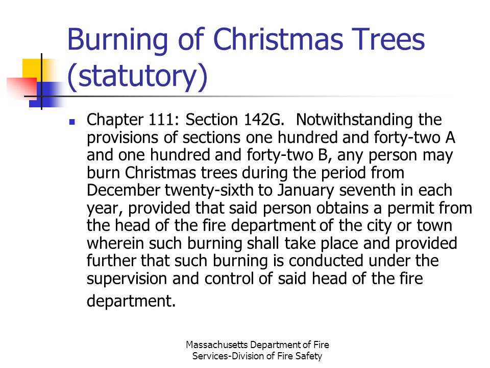 Burning of Christmas Trees (statutory)