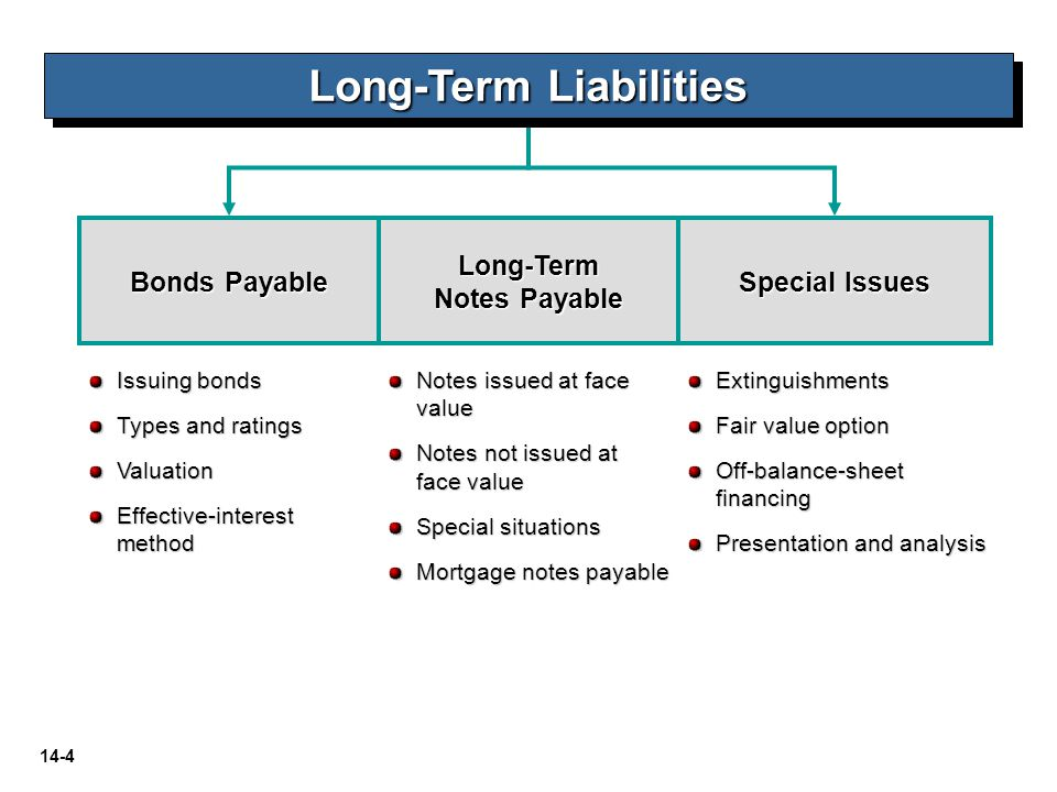 Long-Term Liabilities Long-Term Notes Payable