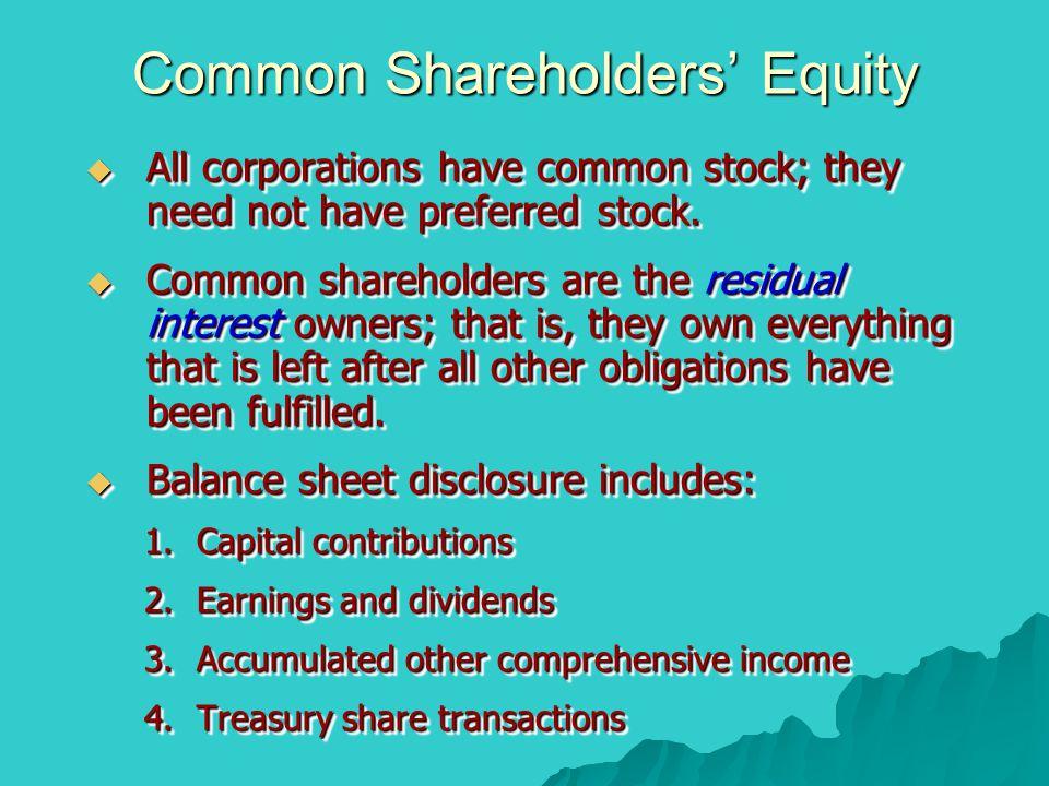 Common Shareholders' Equity