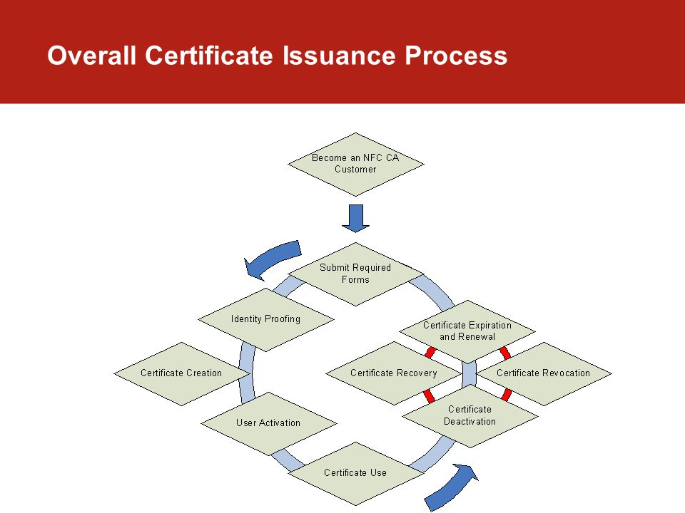 Overall Certificate Issuance Process