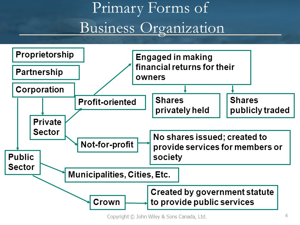 Primary Forms of Business Organization