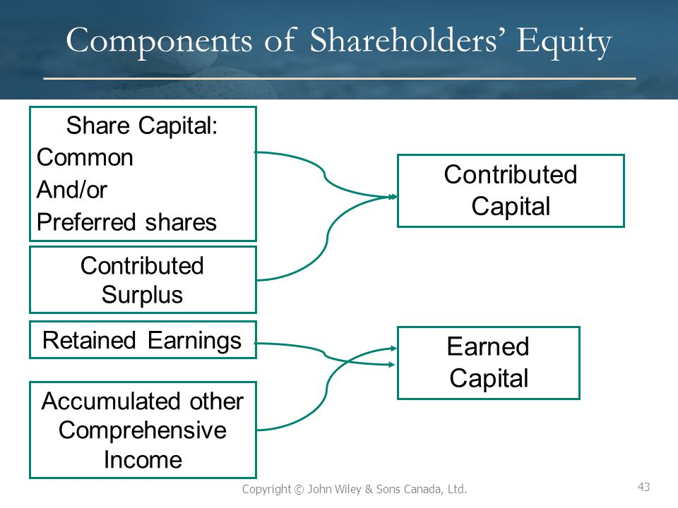 Components of Shareholders' Equity