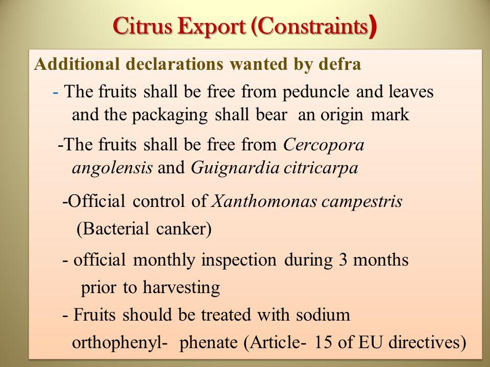 Citrus Export (Constraints)