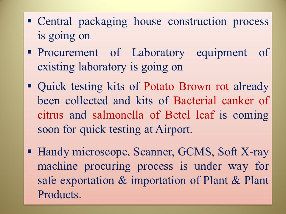 Central packaging house construction process is going on