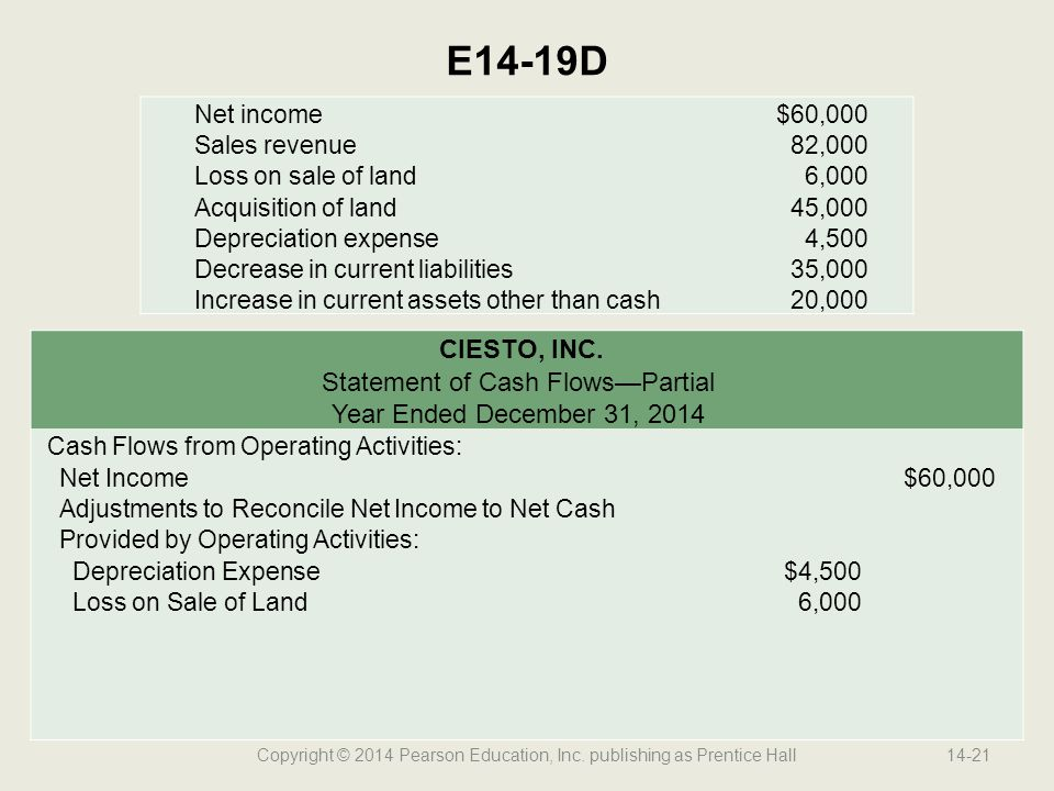 E14-19D CIESTO, INC. Statement of Cash Flows—Partial