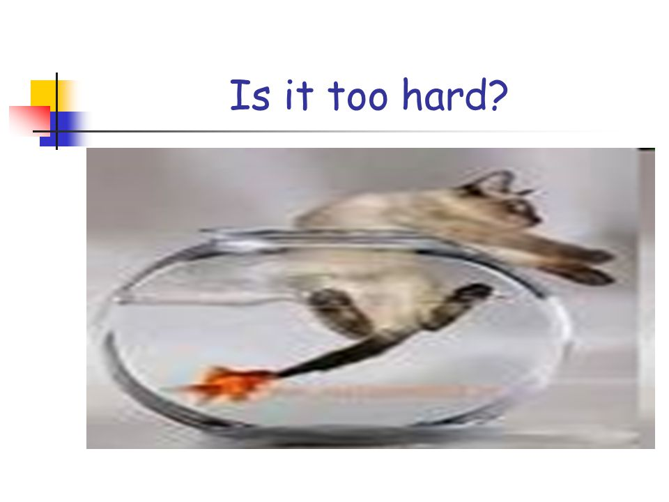 Is it too hard