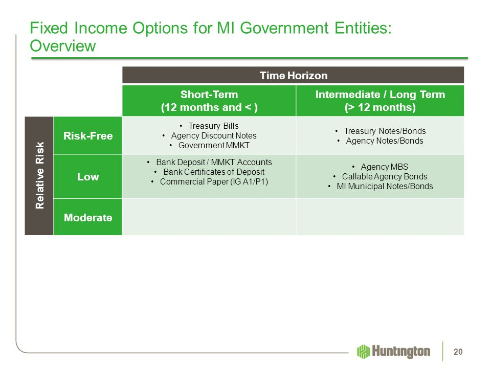 Fixed Income Options for MI Government Entities: Overview