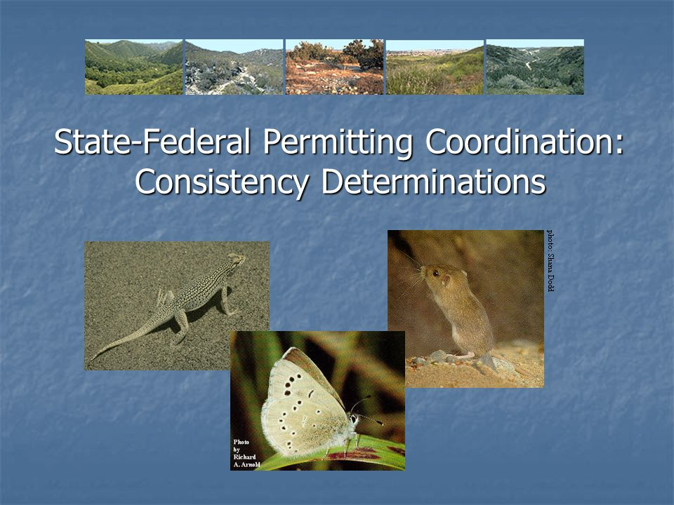 State-Federal Permitting Coordination: Consistency Determinations