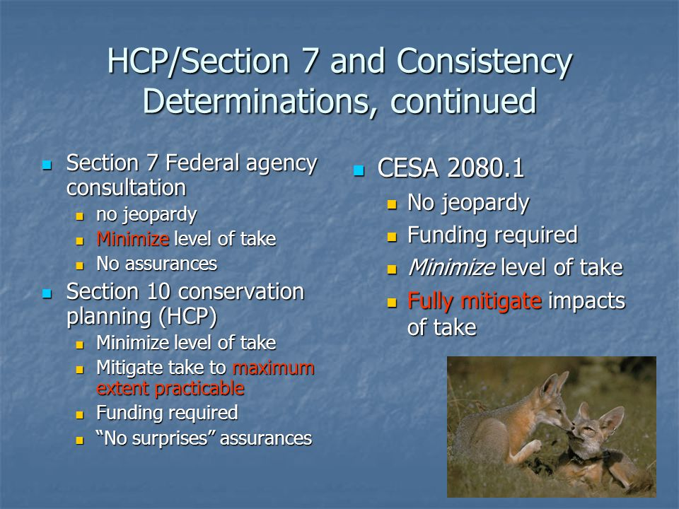 HCP/Section 7 and Consistency Determinations, continued