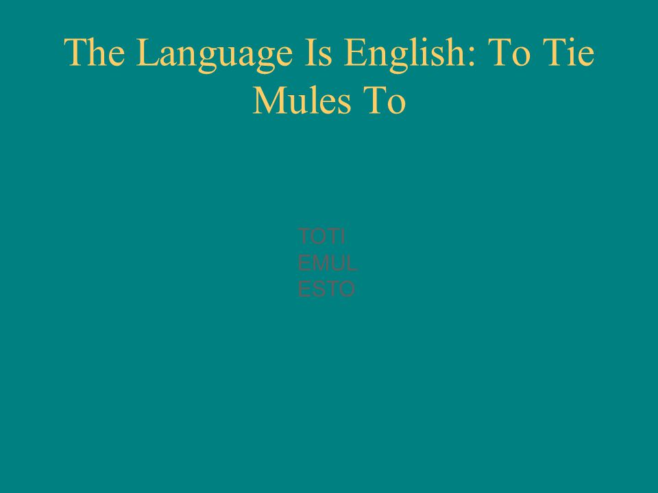 The Language Is English: To Tie Mules To