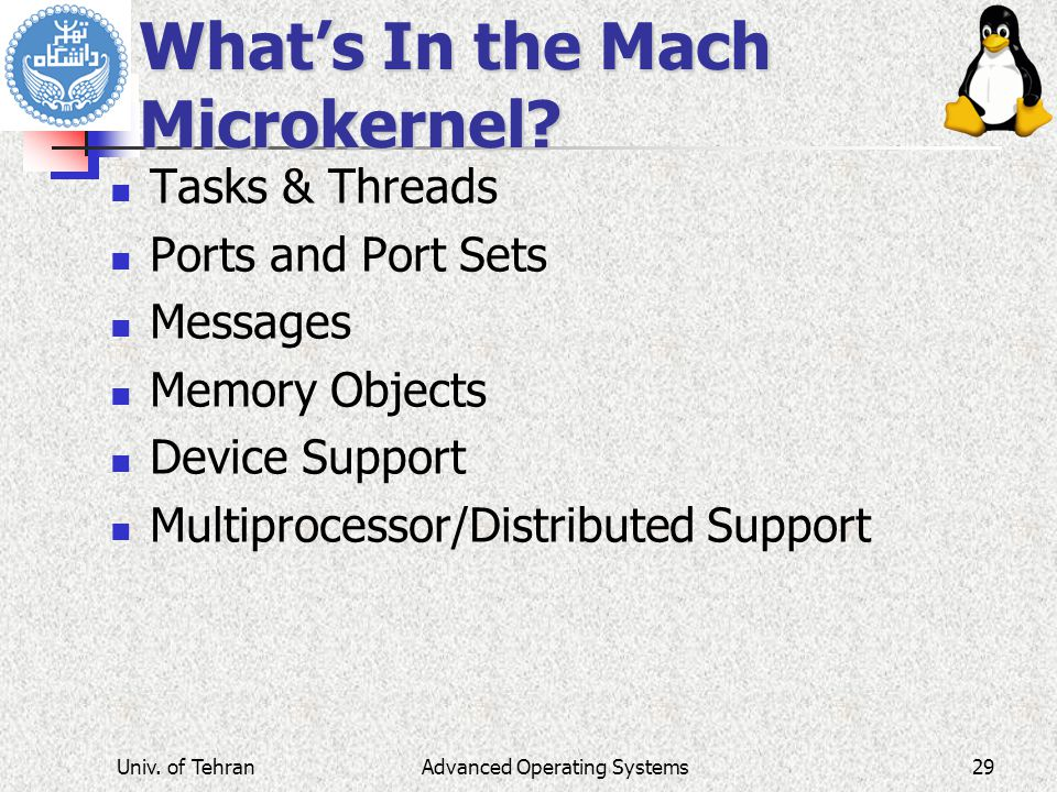 What's In the Mach Microkernel