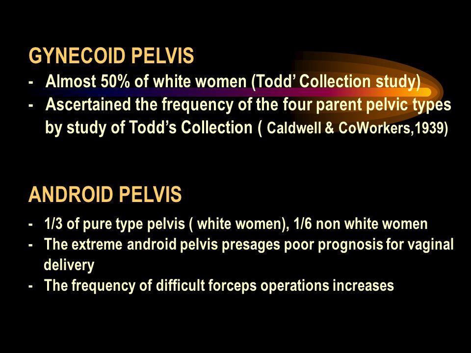 GYNECOID PELVIS ANDROID PELVIS