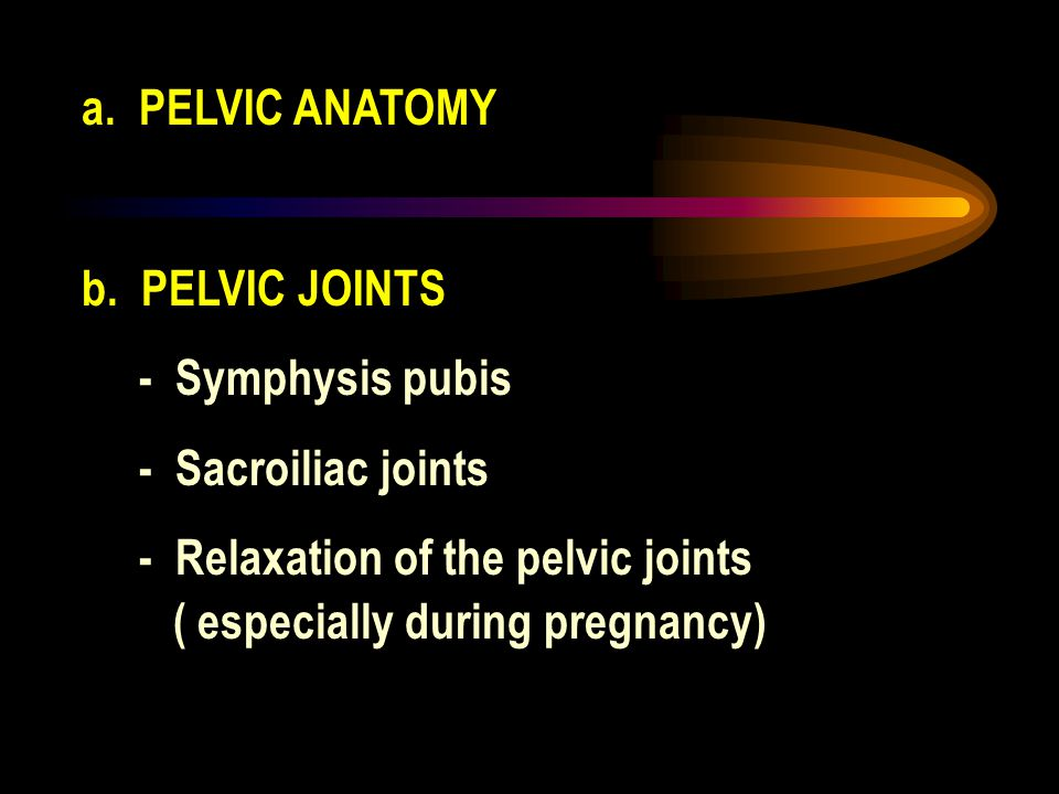 a. PELVIC ANATOMY b. PELVIC JOINTS. - Symphysis pubis. - Sacroiliac joints. - Relaxation of the pelvic joints.