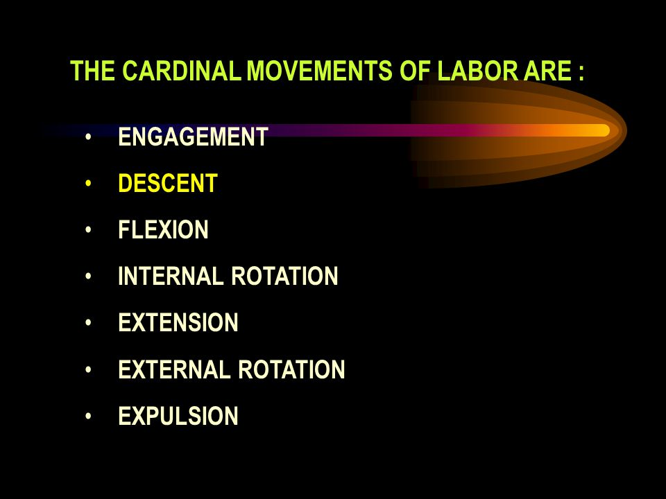 THE CARDINAL MOVEMENTS OF LABOR ARE :