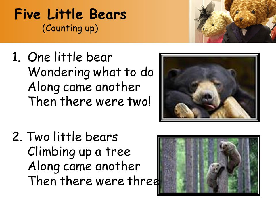Five Little Bears (Counting up) One little bear Wondering what to do Along came another Then there were two!