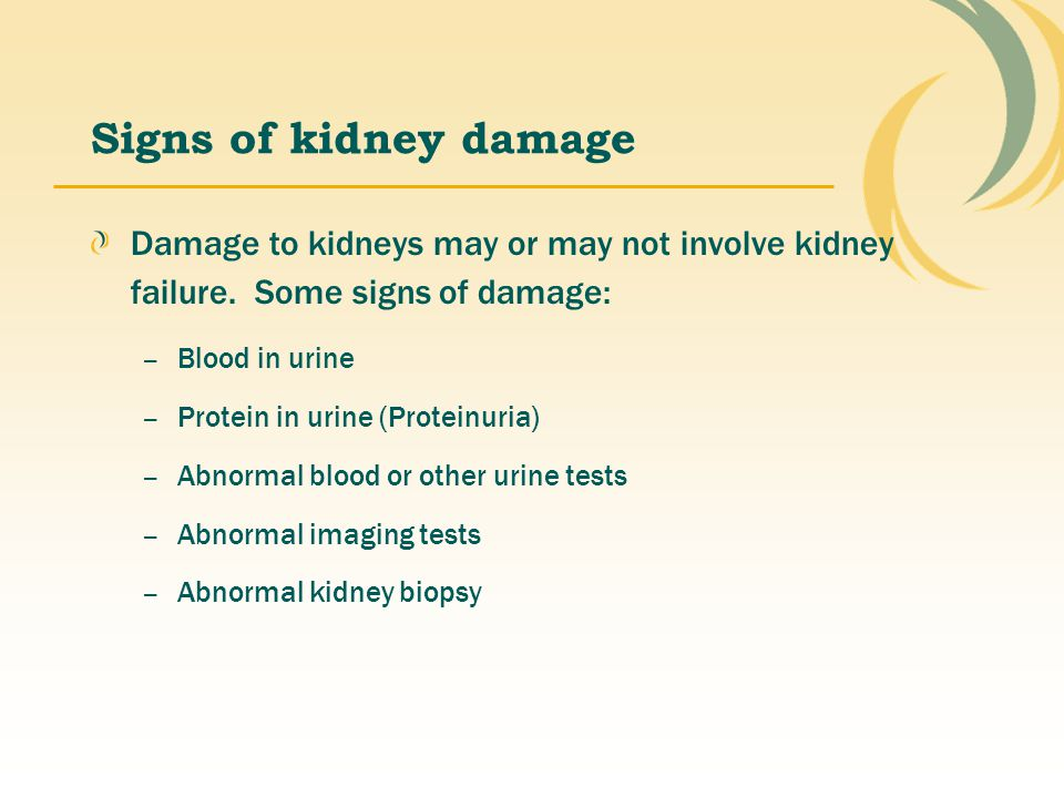 Signs of kidney damage Damage to kidneys may or may not involve kidney failure. Some signs of damage: