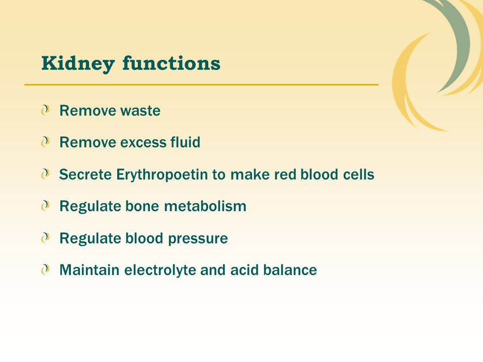 Kidney functions Remove waste Remove excess fluid