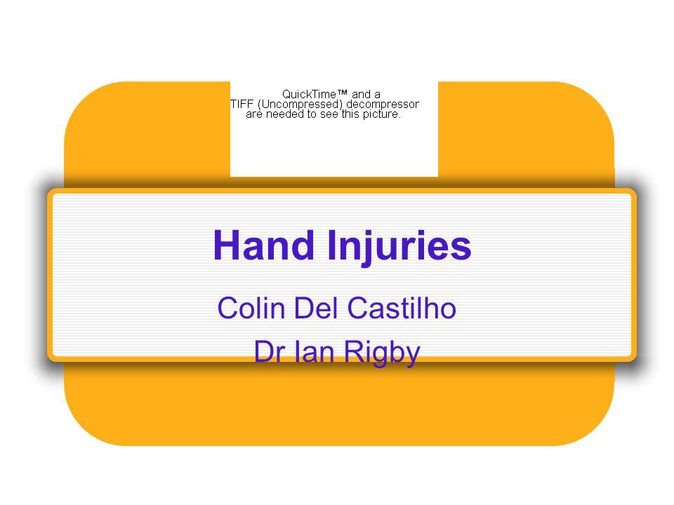 Colin Del Castilho Dr Ian Rigby