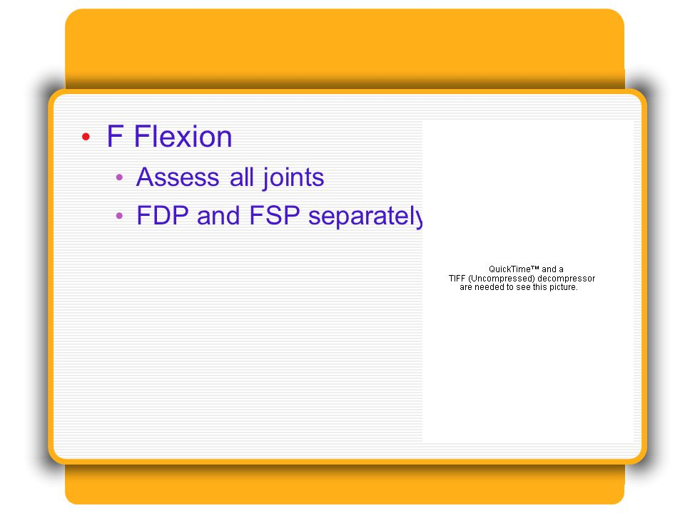 F Flexion Assess all joints FDP and FSP separately
