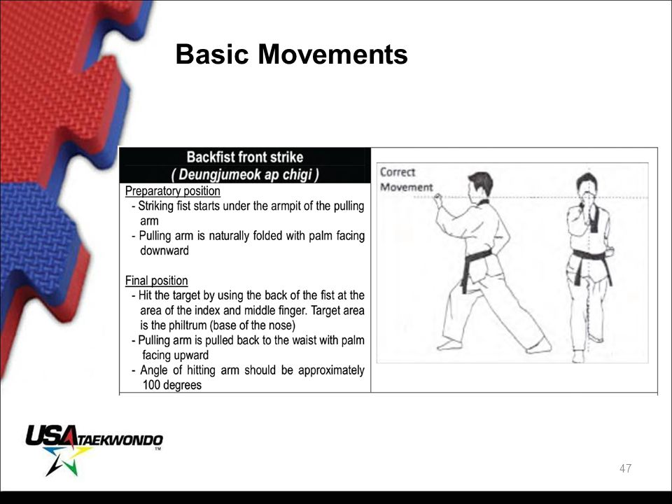 Basic Movements