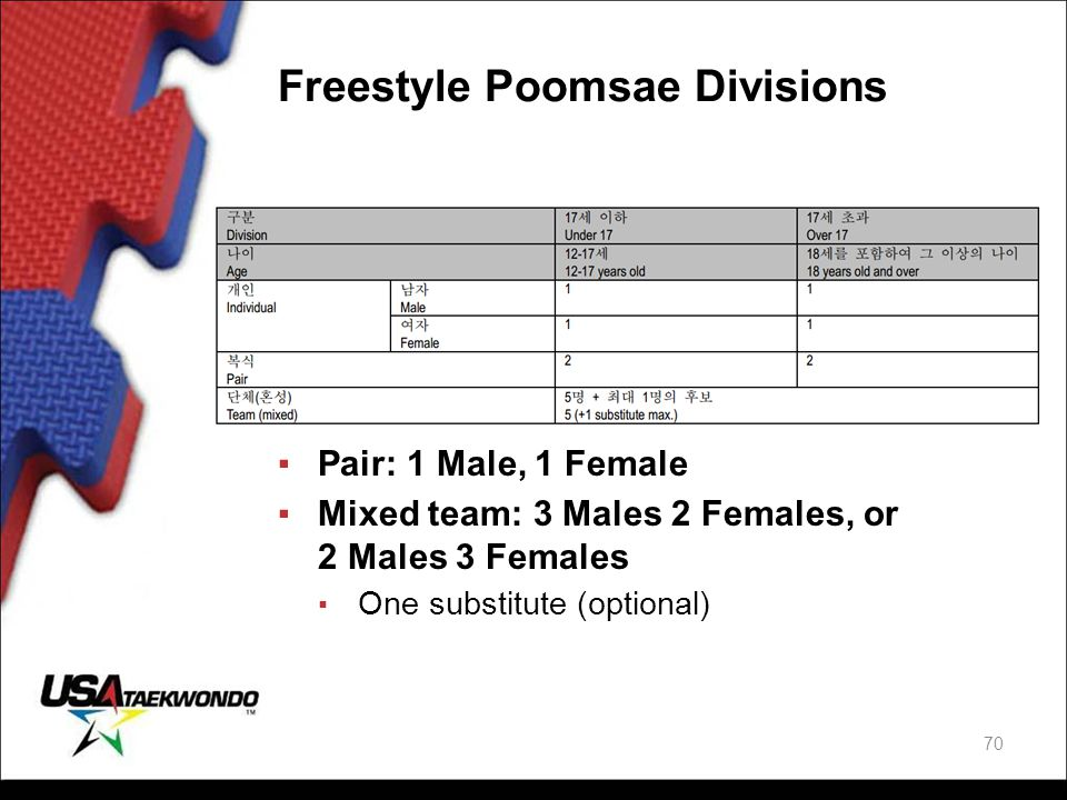 Freestyle Poomsae Divisions
