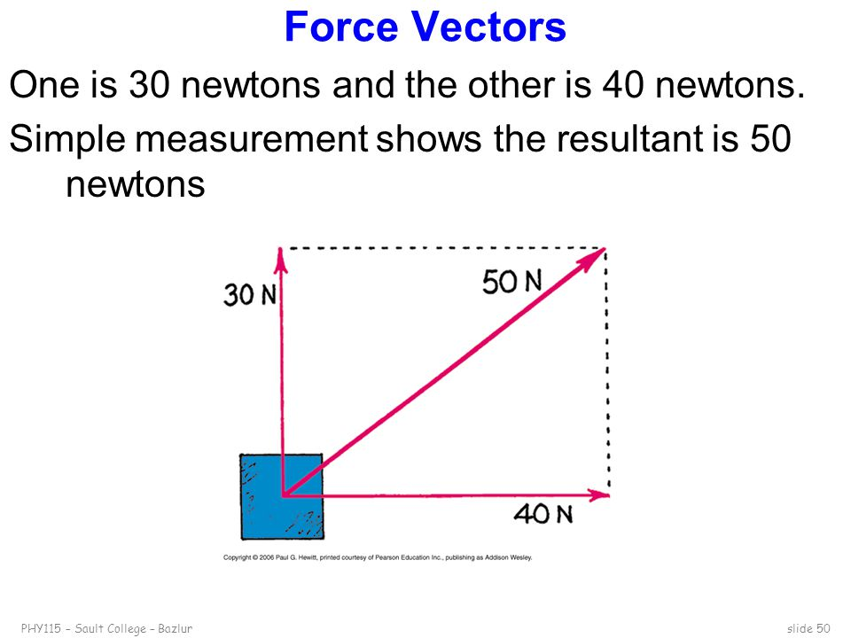 Force Vectors One is 30 newtons and the other is 40 newtons.