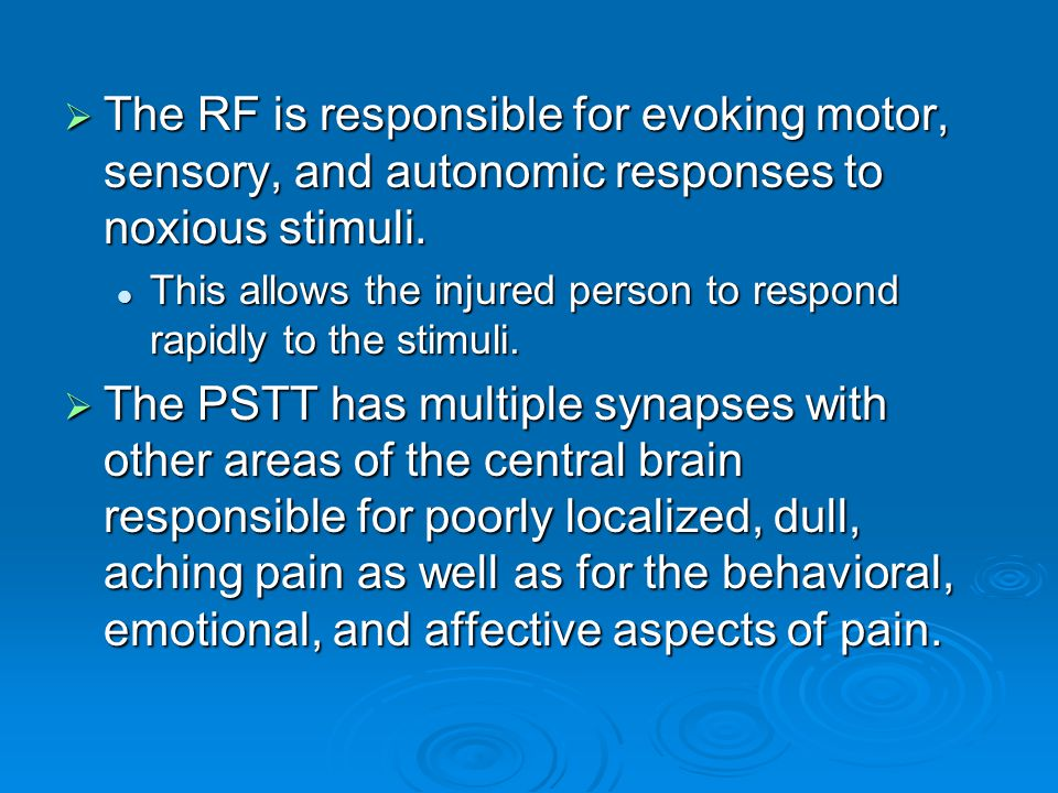 The RF is responsible for evoking motor, sensory, and autonomic responses to noxious stimuli.